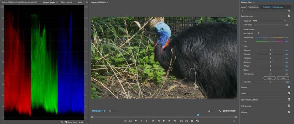 kleurbewerking in Premiere Pro