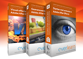 Ultieme After Effects trainingsbundel | Nederlandstalige online training van everlearn